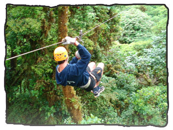 Zipline in the Costa Rican forest