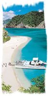 Tortuga Island Cruise during the Best One Day Tours from San José package in Costa Rica